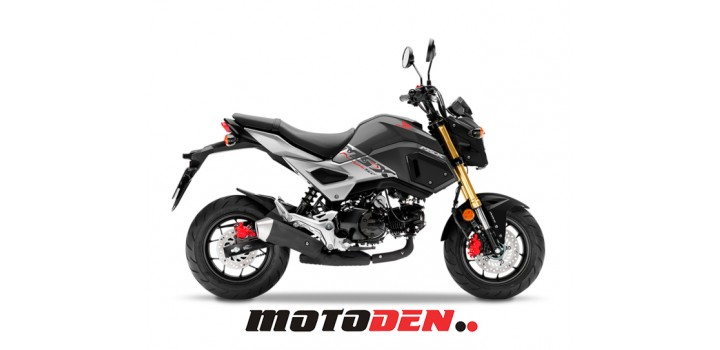 Honda REDUCED MSX125 RED or GREY